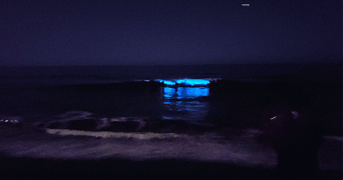 Bioluminescence during May at San Clemente Beach CA